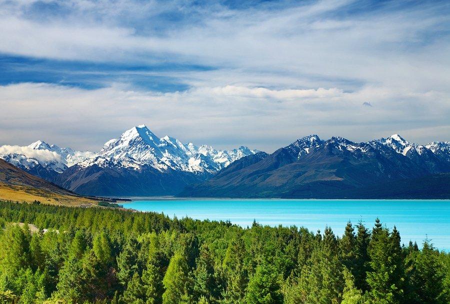 New Zealand in a week