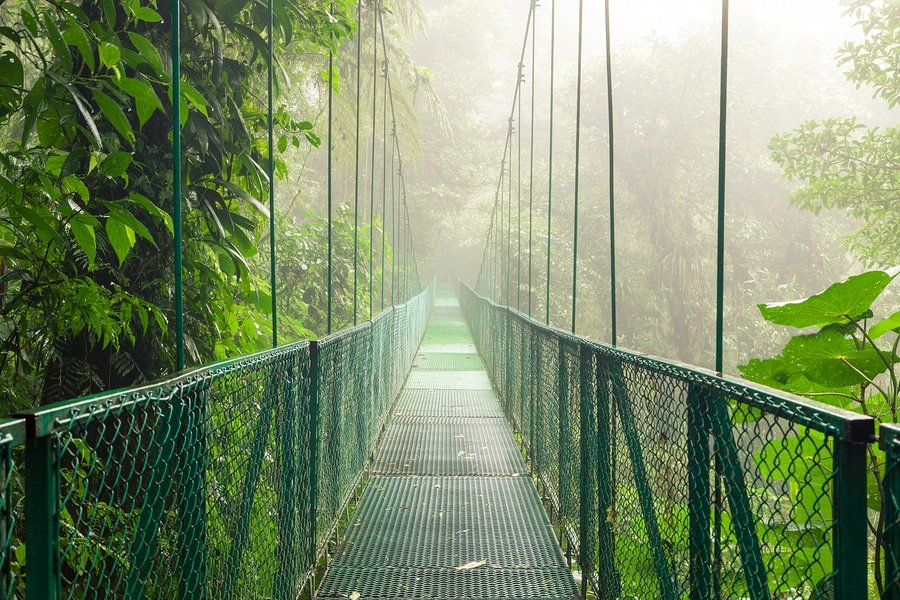 Hanging suspension bridge in Monteverde Cloud Forest Biological Reserve