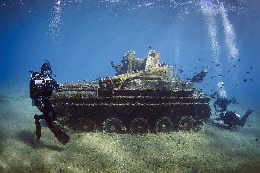 Snorkeling around tank M40 in Aqaba Bay, Jordan